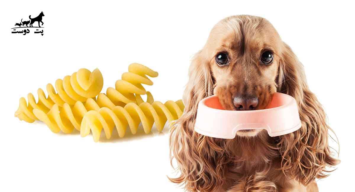 ماکارونی از غذاهای ممنوعه سگ محسوب می شود ؟