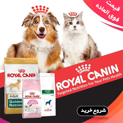 royal-side-ad